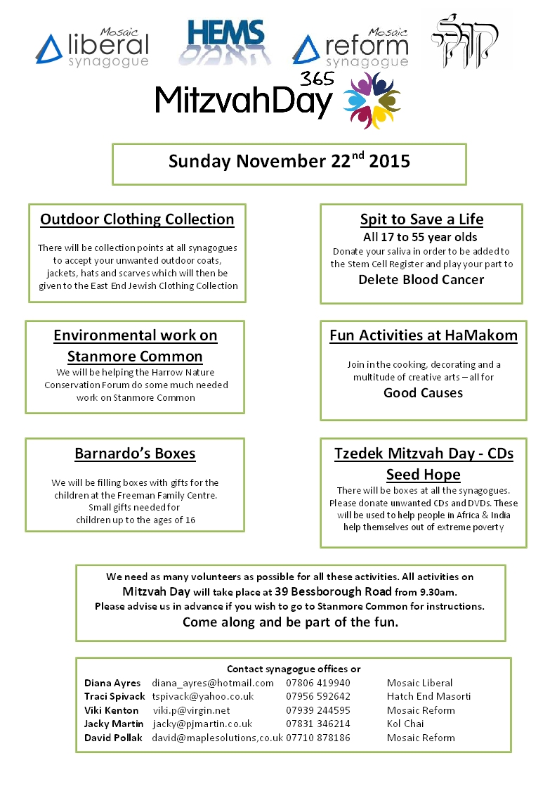mitzvah day 2015 flier final (5)